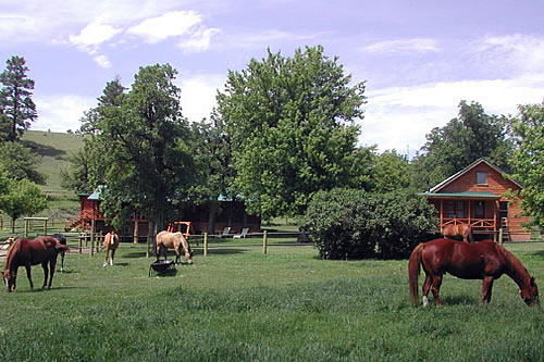 diamond l ranch